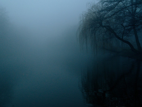 The Women in the Fog