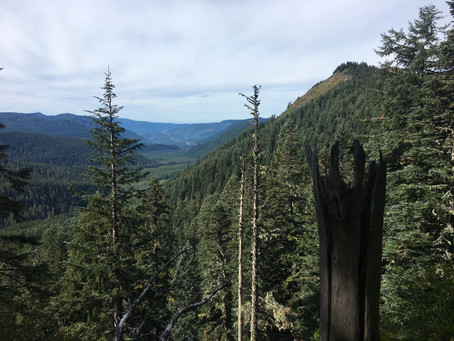 """The Nikwax Journal: Reflecting On The """"Wild"""" In """"Wilderness"""""""
