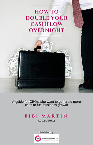 Double your cash flow ebook CEO business growth