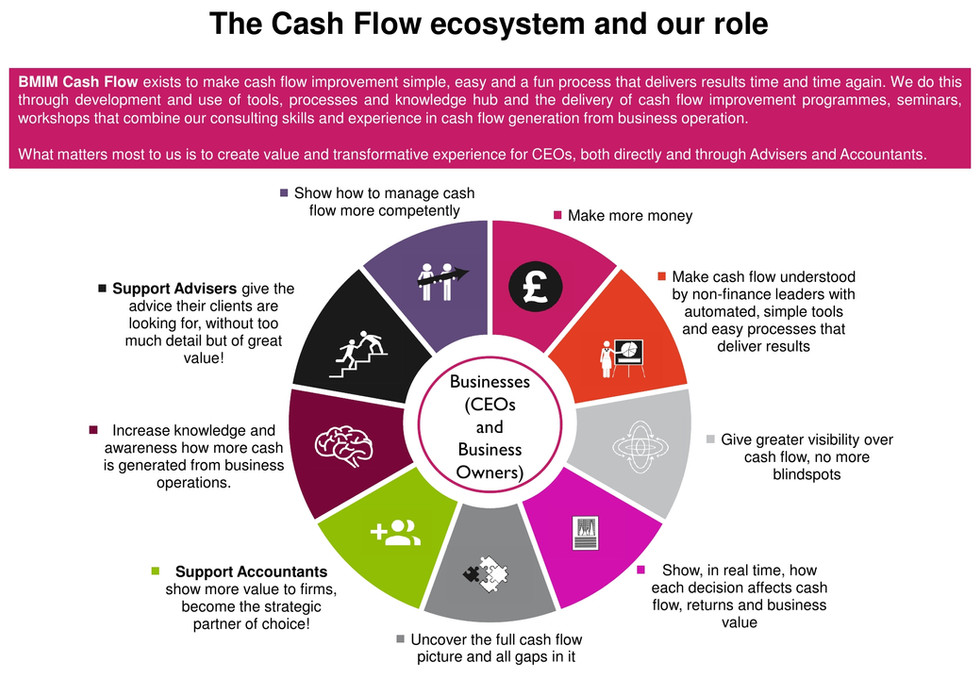 Cash flow ecosystem and Our role_website.jpg