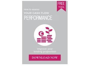 cash flow performance tool business bank loan