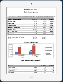IPAD WITH WORKING CAPITAL4.png