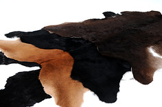 Black Sheep Leathers (111).JPG