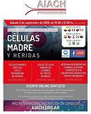 CÉLULAS MADRE Y HERIDAS