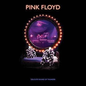 """PINK FLOYD """"delicate sound of thunder"""" sortie le 20 Nov / Warner"""