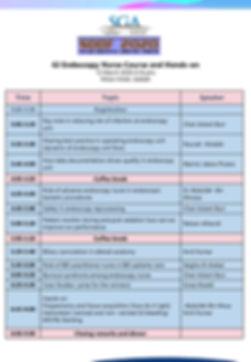 SDDF2020 Workshop - GI Nursing Endoscopy