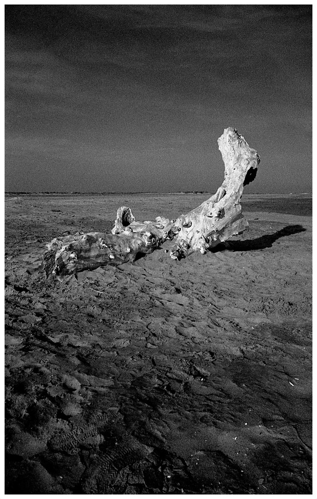 . Plage de Tamaris . Saintes-Maries-de-la-Mer . 1980 .