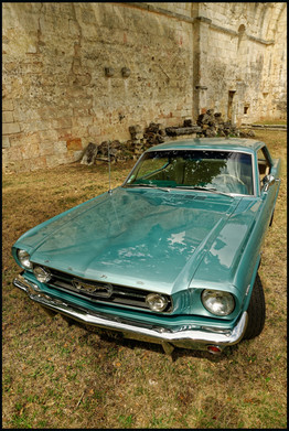 . Ford Mustang GT / Modèle 1966 .