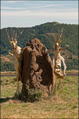 . Les MissCanthus Giganteus .