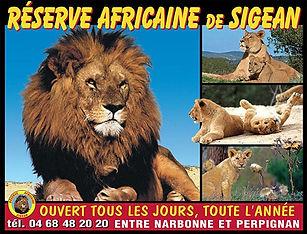 reserve-africaine-de-sigean.jpg