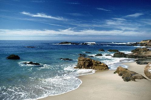 Oaxaca Playas 4 días: Seguro