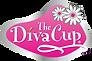 Diva_cup_terre-a-soi
