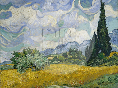 Field with cypress