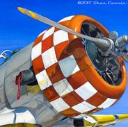 T6 Texan Airplane