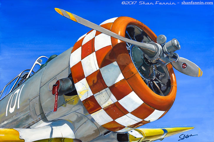 1944 T6 Texan World War II Era Airplane