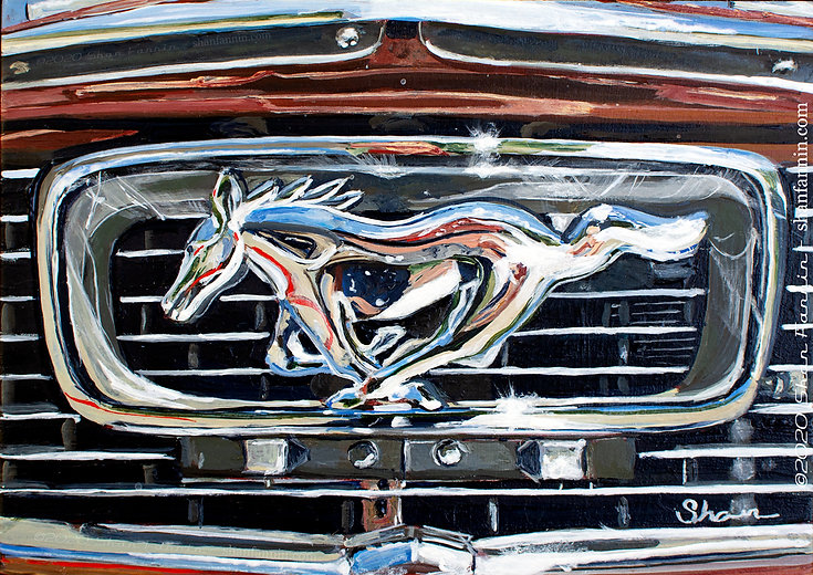 Mustang Grill Detail