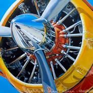 1958 De Havilland DHC-2 Beaver.jpg