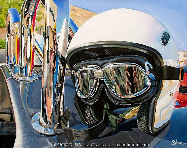 Helmet-on-a-Cobra-WATERMARKED.jpg