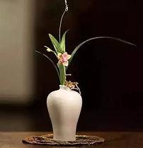 oriental flowers arrange/ Ikebana