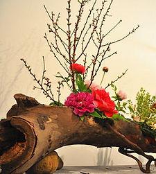 oriental flowers fans club London/ Ikebana school London /tang flowers