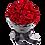 Thumbnail: rose in
