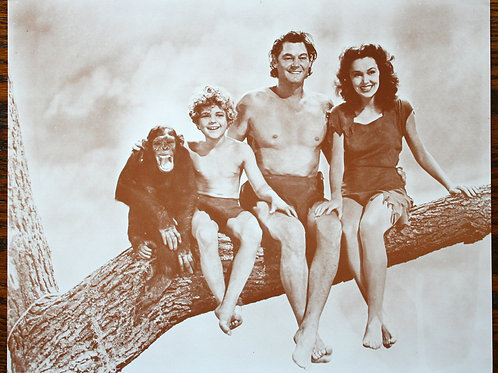 Tarzan Family on a Limb
