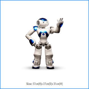 Nao Robot (Mini)