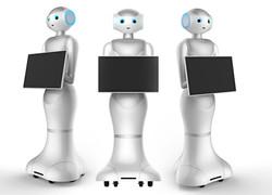 Hospitality Robot