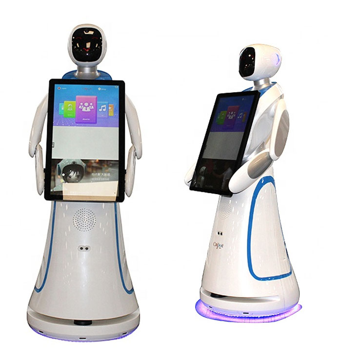 Display Robot