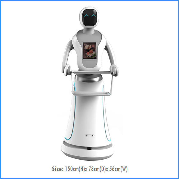 Delivery Robot D9