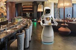 Serve Robot