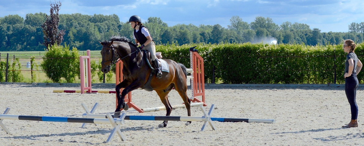 ESI Youth Rider Camp | Horse riding camp | Biddinghuizen, the Netherlands | Summer camp 2020