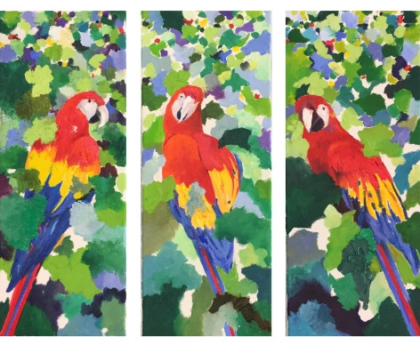 Parrot Portrait One, Two & Three