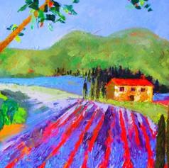 Lavender House