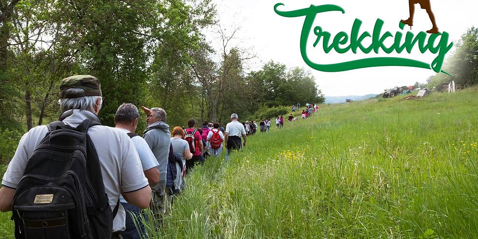 Trekking Linea Gotica Iola - Montese con Salto Salto Trekking