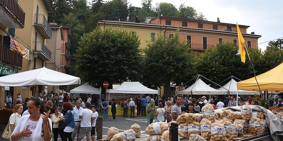 Mostra mercato della patata e del Parmigiano Reggiano di montagna