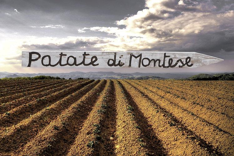 Patate di Montese.jpg