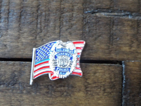 Flag Pin Realized