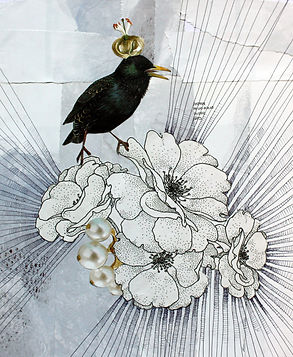 Bird With Crown.jpg