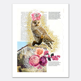 Owl with Flowers Collage