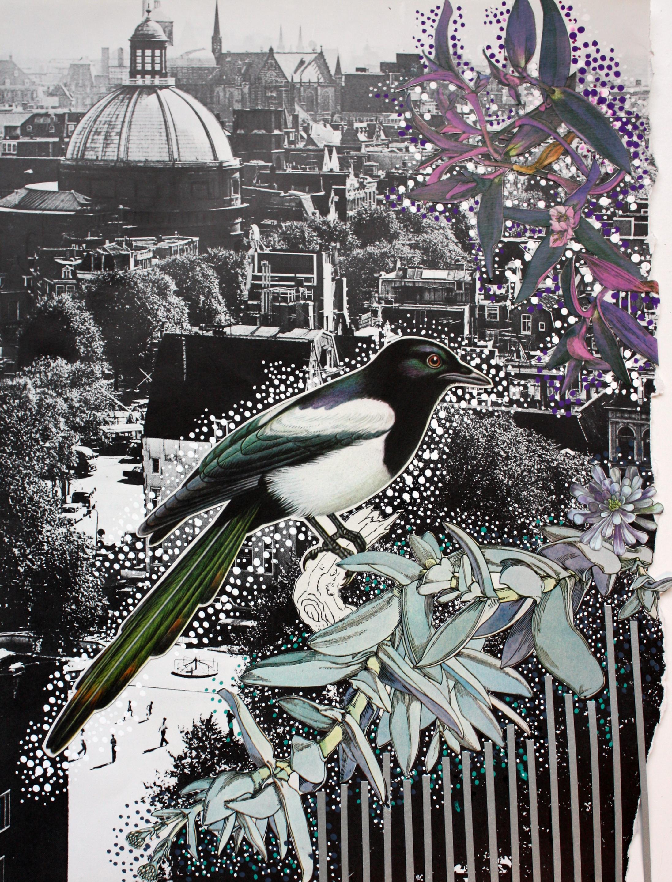 City Bird #1