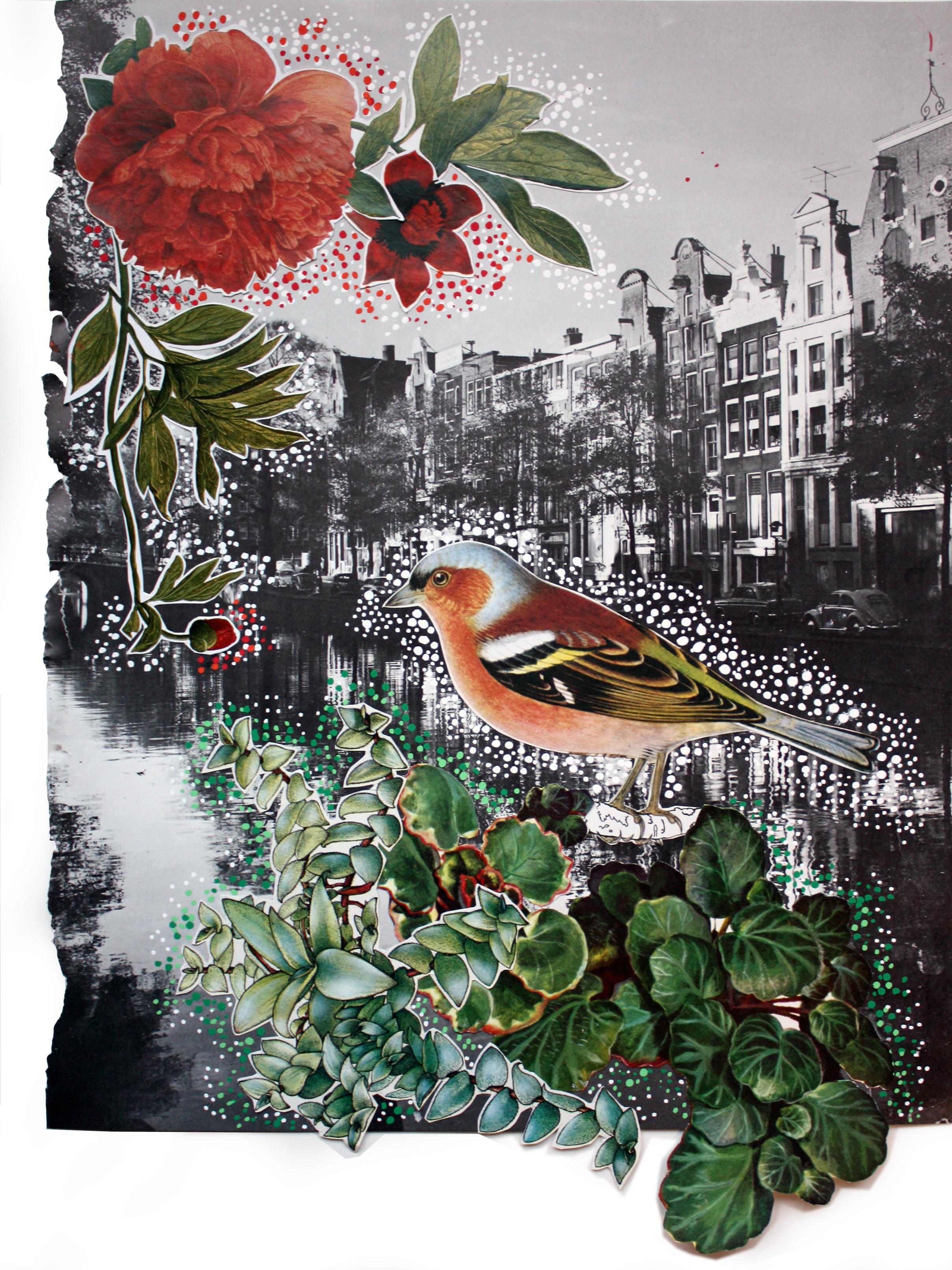 City Bird #2