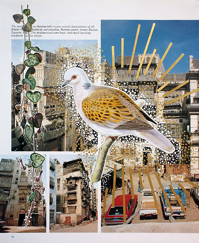 City Bird_3.jpg