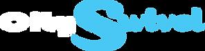 CitySwivel.white.logo.lg.png