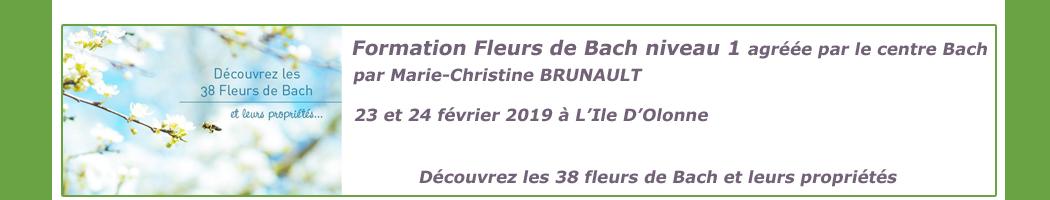 23 et 24 février 2019