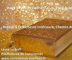 stage_laure.jpg