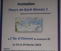 fleurs_bach_2019.jpg