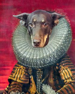 Dog Tudor style portrait