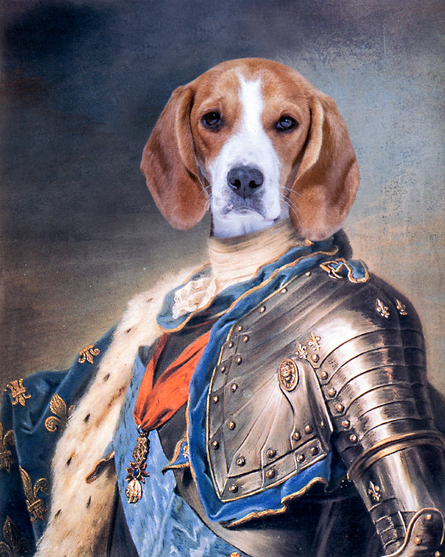 Dog portrait, king in armor