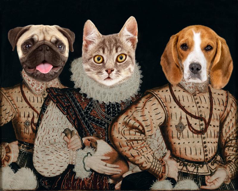Portrait for 3 pets